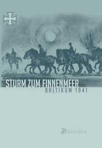 Sturm zum Finnenmeer